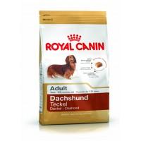 Royal Canin Dachshund Teckel Adult 7.5 Kg Hrana Uscata Pentru Caini