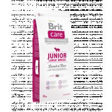 Brit Care Junior Large Breed cu Miel si Orez 12 Kg Livrare Gratuita