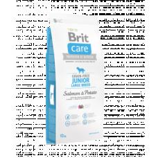 Brit Care Junior Large Breed cu Somon si Cartofi 12 Kg Livrare GRATUITA