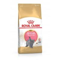 Royal Canin British Shorthair Kitten 10 Kg Hrana Uscata Pentru Pisici